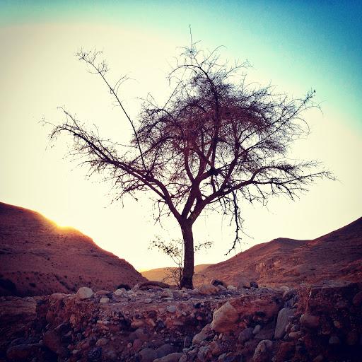 Judean Desert (photo credit: Jorg Nicht)