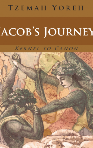 "In ""Jacob's Journey,"" Yoreh examines one of the Bible's bloodiest episodes -- the rape of Dinah and her brothers'  grisly retaliation. (Courtesy of Tzemah Yoreh)"