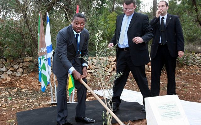 Togo President Faure Essozimna Gnassingbé in the act of planting a tree (photo credit: Yossi Zamir)