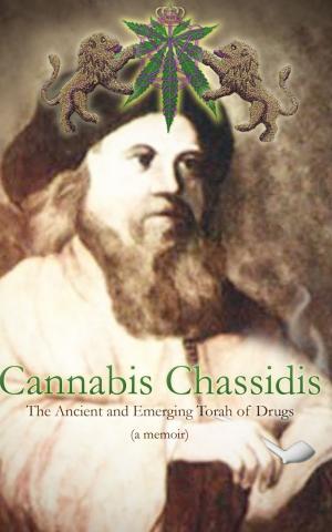 """""""Drugs don't create a spiritual experience,"""" says author Yoseph Needelman. (Courtesy of JTA)"""