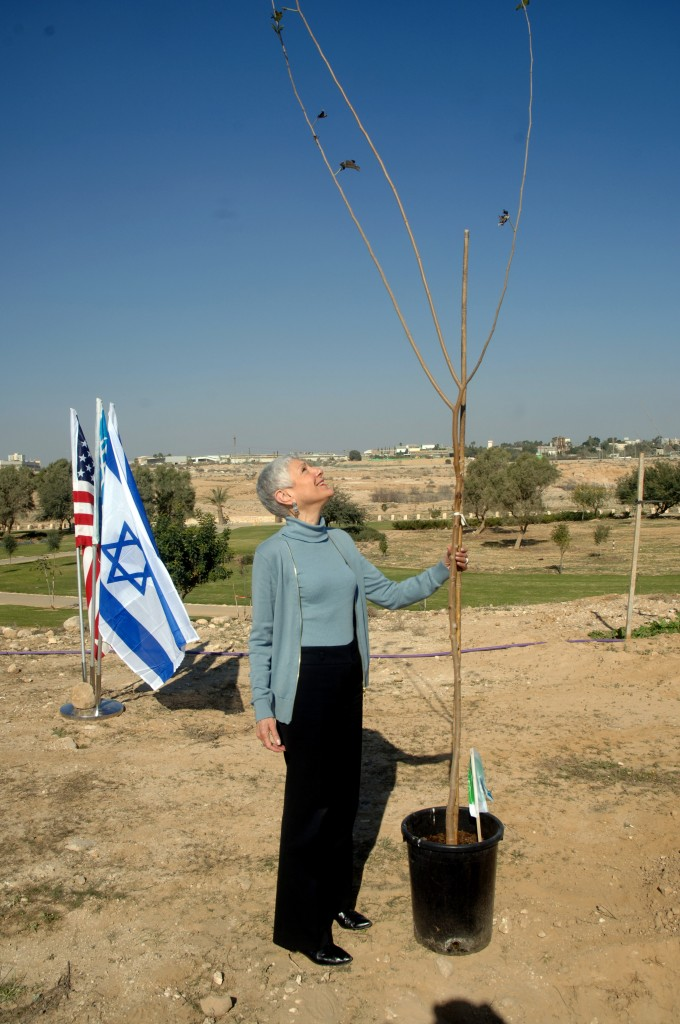 Hadassah president Marcie Natan plants a tree to commemorate the victims of the Sandy Hook school shooting in Beersheba, on Friday, Dec. 29 (photo credit: courtesy of Hadassah)