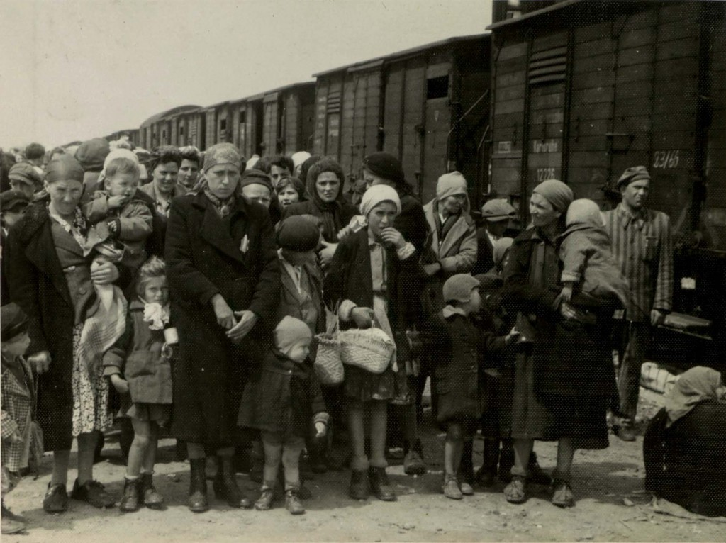 jewish holocaust essay Are connected with jewish and romani life and with the holocaust (bełżec   tarnów  many of the essay writers refer to personal experiences and reflections  on.