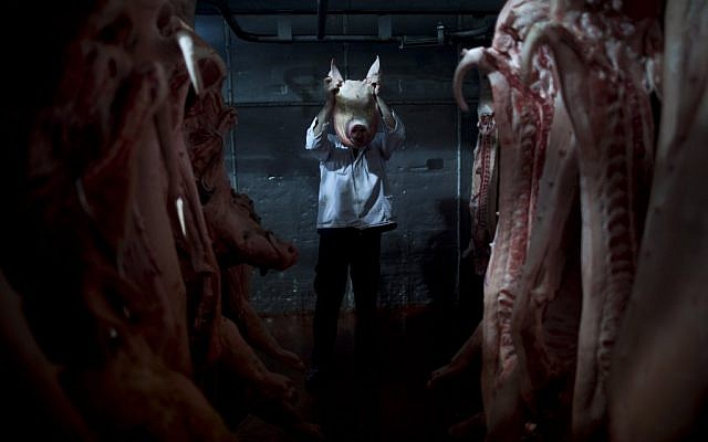An employee of the Mizra pork factory poses with a pig's head in a refrigerated warehouse in Kibbutz Mizra, northern Israel. The million-strong Soviet immigrant community has increased customer demand for pork in the country, a non-kosher food rarely eaten by Israeli Jews or Arab-Israeli Muslims. (photo credit: AP Photo/Oded Balilty)