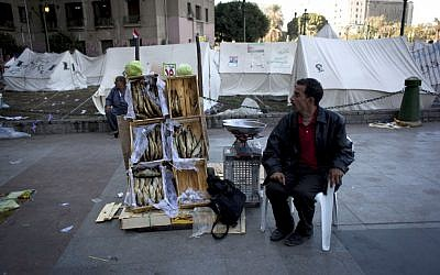 An Egyptian street vendor displays dried fish for sale near the protest camp tents in Tahrir Square, Cairo, Egypt, Wednesday, Dec. 12 (photo credit: AP/Nasser Nasser)