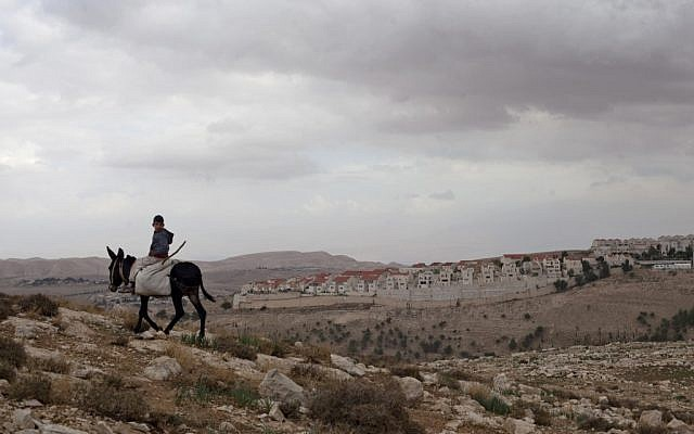 A Palestinian boy riding a donkey near the E1 settlement corridor, with Ma'aleh Adumim in the background (photo credit: (AP/Sebastian Scheiner)