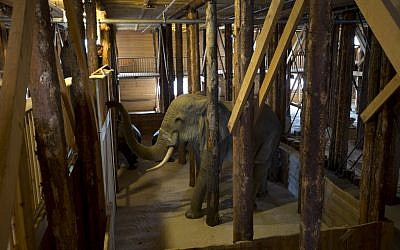 Interior view of the full scale replica of Noah's Ark with life-size replica's of animals which has opened its doors in Dordrecht, Netherlands, Monday Dec. 10 (photo credit: AP/Peter Dejong)