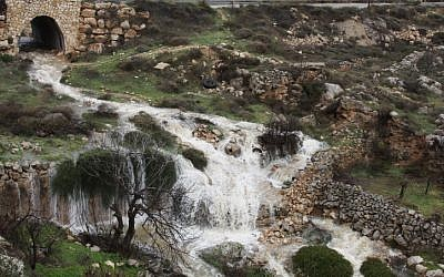 Swirling water flows during flood at a spring near Hapirim River in Gush Etzion, located in the Judean Hills outside Jerusalem. (photo credit: Gershon Elinson/Flash90)