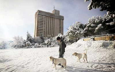 A man walks his dogs in snowy Independence Park in central Jerusalem, Thursday (photo credit: Miriam Alster/Flash90)
