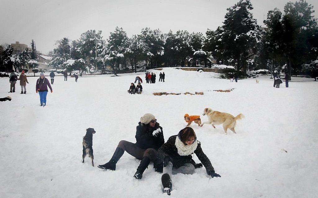 Jerusalemites frolic in the white stuff (photo credit: Miriam Alster/Flash 90)