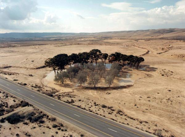 A liman in the Negev (Courtesy KKL)
