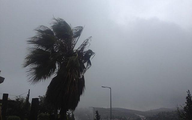 Strong winds outside Jerusalem on Monday (photo credit: Joshua Davidovich/The Times of Israel)