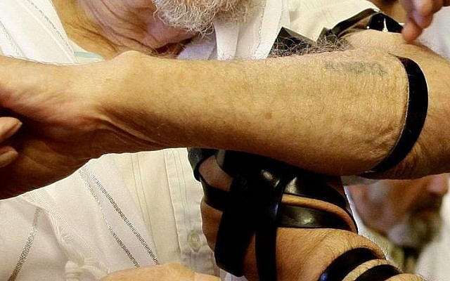 A Holocaust survivor with a number tattooed on his forearm puts on Tefillin (photo credit: Flash90)