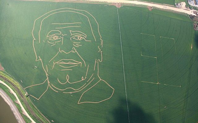 A portrait of President Shimon Peres etched into a wheat field at Kibbutz Tal-Yossef, February 2013. (photo credit: Assaf Suleman)