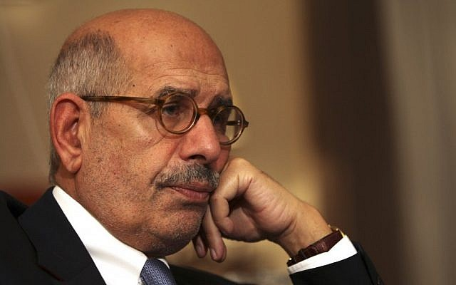 Mohamed ElBaradei (photo credit: AP/Thomas Hartwell/File)