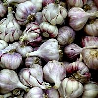 Illustrative image of garlic ( Abir Sultan/Flash90)