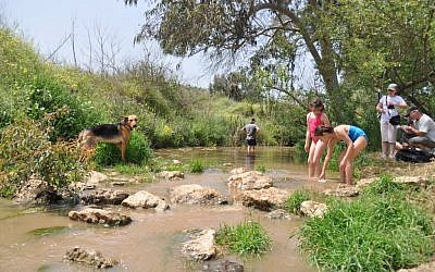 Hikers at the Tavor Stream, in Israel's north. (photo credit; CC BY, by Pikiwikisrael, Wikimedia Commons)