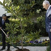 President Barack Obama and President Shimon Peres plant a tree during a welcoming ceremony for Obama at Peres' residence in Jerusalem on March 20, 2013. (Photo credit: AP)