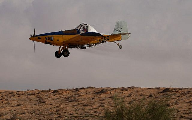 A crop-dusting plane sprays a field in Israel's Negev Desert, Wednesday (Dror Garti/Flash90)
