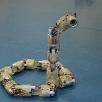 The Technion's robotic snake (Courtesy)