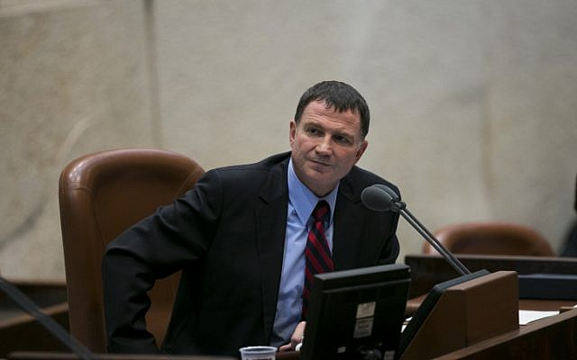 Knesset Speaker Yuli Edelstein oversees a plenum session in March, 2013. (Yonatan Sindel/Flash90)