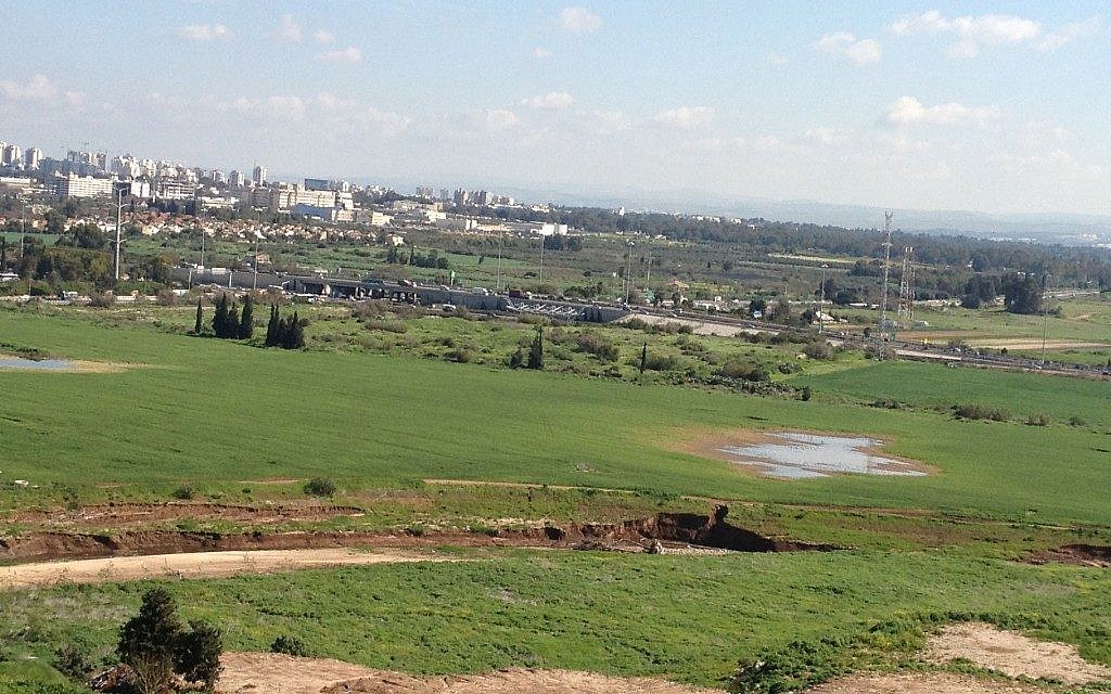 Green fields and glittering office towers (photo credit: Jessica Steinberg/Times of Israel)