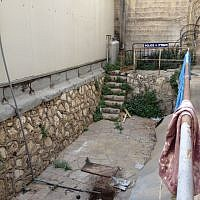 The backyard with potential (photo credit: Jessica Steinberg/Times of Israel)