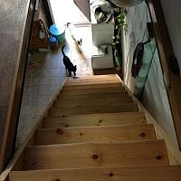 Shira Wise built her open stairs twice, but now they're well-spaced (photo credit: Jessica Steinberg/Times of Israel)