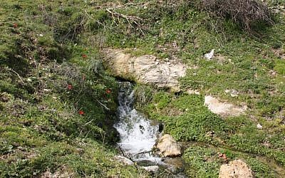 Waterfalls on path to Nahal, Gush Halav (photo credit: Shmuel Bar-Am)