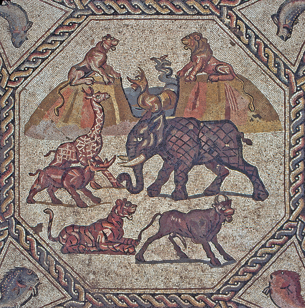Part of the Lod mosaic (photo credit: Niki Davidov/courtesy of the Israel Antiquities Authority)