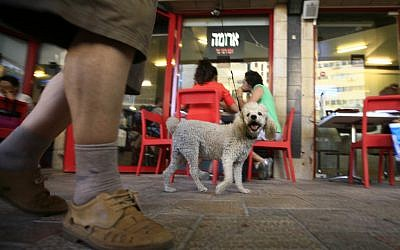 An Aroma franchise in Jerusalem (illustrative photo: Nati Shohat/Flash90)