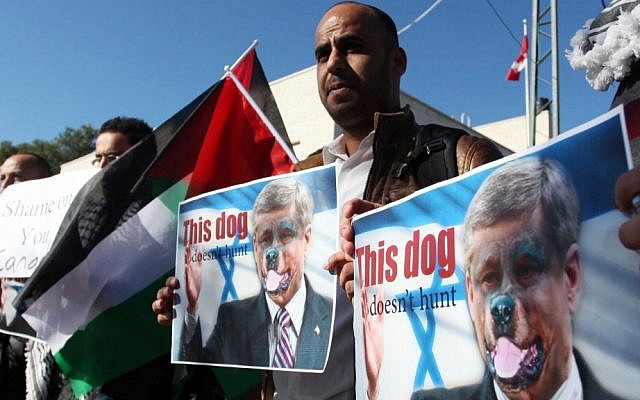 Palestinians hold pictures of Canadian Prime Minister Stephen Harper superimposed with a face of a dog during a protest following Harper's remarks about the Palestinian UN bid for an observer state status, in front of Canadian representative offices in Ramallah, November 28, 2012. (photo credit: Issam RImawi/Flash90)