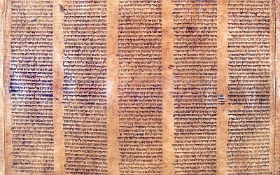 Part of a document that an Italian expert says to be the oldest known complete Torah scroll. (photo credit: AP Photo/Alma Mater Studiorum Universita' di Bologna)