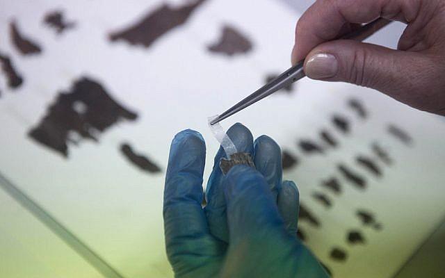 An Israel Antiquities Authority employee works on fragments of the Dead Sea Scrolls in Jerusalem on Friday, May 10, 2013. (photo credit: AP/Dan Balilty)