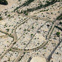 Neat lines in a Jewish cemetery in Haifa (photo: Qanta Ahmed)