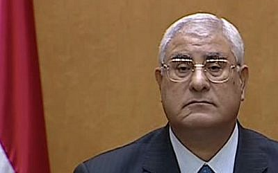 Egypt's interim president Adli Mansour speaks after being sworn in at the constitutional court in Cairo, Thursday, July 4, 2013 (photo credit: AP/Egyptian State TV)