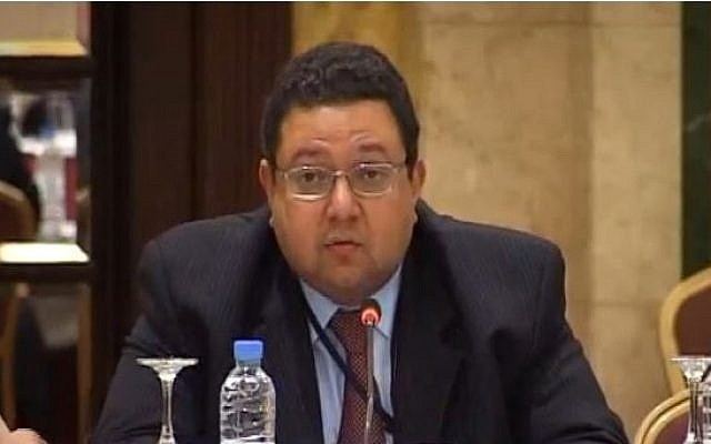 Ziad Bahaa-Eldin, January 2012 (photo credit: Screen capture/YouTube/UNESCWA)