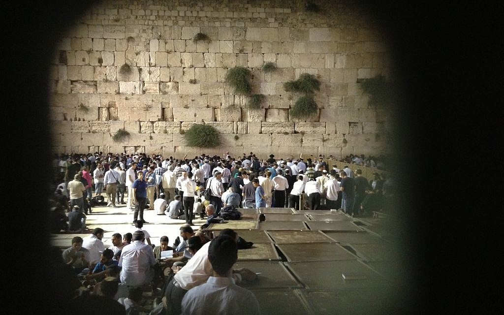 A glimpse of the men's section through the fence (photo credit: Nicole Levin/TImes of Israel)