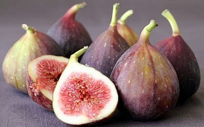 The delicate sweetness of figs, in season now (photo credit: Andrea Brownstein/Photoli Photography)