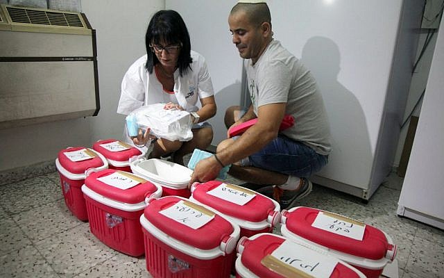 Workers at the Beersheba Health Ministry office with the polio medication on August 4, 2013, (photo credit: Flash90)