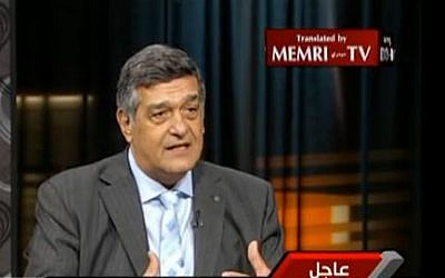 Egyptian law professor Nabil Ahmed Helmy, in an Egypt Channel 1 interview that aired on August 7, 2013 (photo credit: YouTube screen capture).