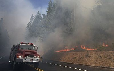 A fire truck drives past burning trees as firefighters continue to battle the Rim Fire near Yosemite National Park, California, on Monday (photo credit: AP/Jae C. Hong)