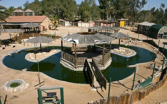 Modern attractions at Kibbutz Revivim (photo credit: Shmuel Bar-Am)