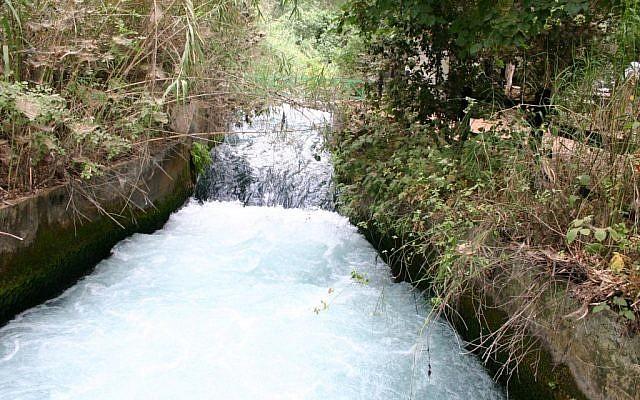 The waters in full flow at Tel Dan (photo credit: Shmuel Baram)