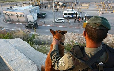 A soldier with a dog at a checkpoint outside Jerusalem. (Illustrative photo: Kobi Gideon/Flash90)