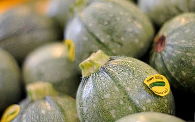 Short, squat zucchini are perfect for stuffing (photo credit: Sophie Gordon/Flash 90)