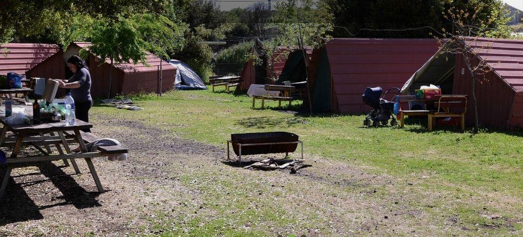 A look at the Ya'ar Ha'ayalim campsite (Courtesy Ya'ar Ha'ayalim)
