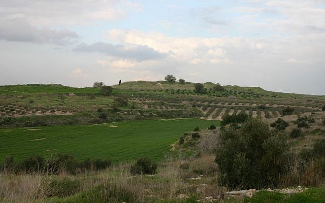 Tel Gezer (photo credit: Shmuel Bar-Am)
