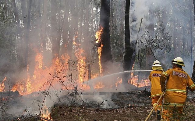 A firefighter tries to control flames near houses at Bilpin, 75 kilometers (47 miles) west of Sydney, Australia, on Tuesday, October 22, 2013. (photo credit: AP/Rob Griffith)