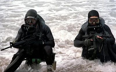 US Navy SEALs (US Department of Defense)