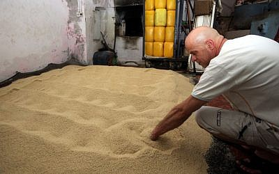 Working through the sesame seeds at the Jebrini tahini factory in the Old City of Jerusalem (photo credit: Yossi Zamir/Flash 90)